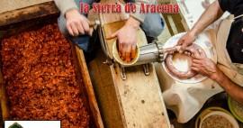 Matanza Tradicional del cerdo ibérico en la Sierra de Aracena